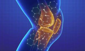 変形性膝関節症の再生医療「培養幹細胞治療」