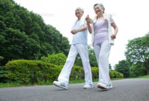 膝関節と運動